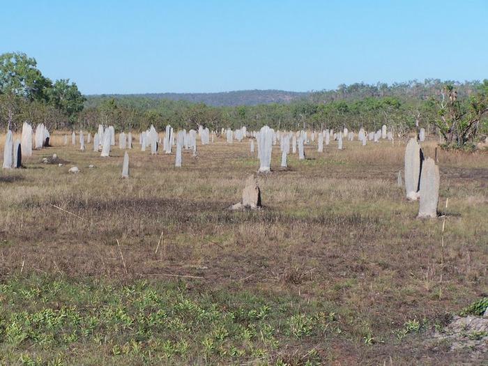 Национальный парк Какаду (Австралия) 61152