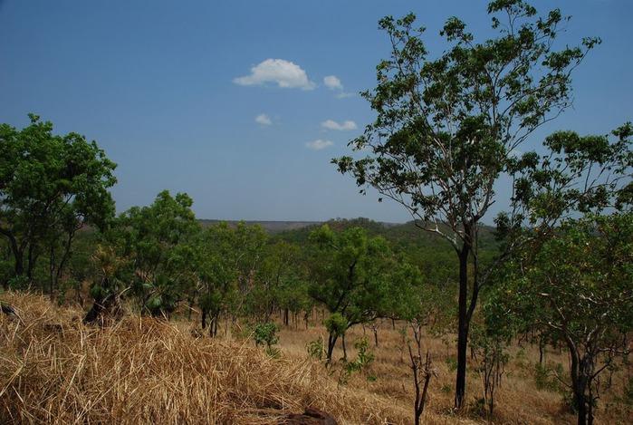 Национальный парк Какаду (Австралия) 36462
