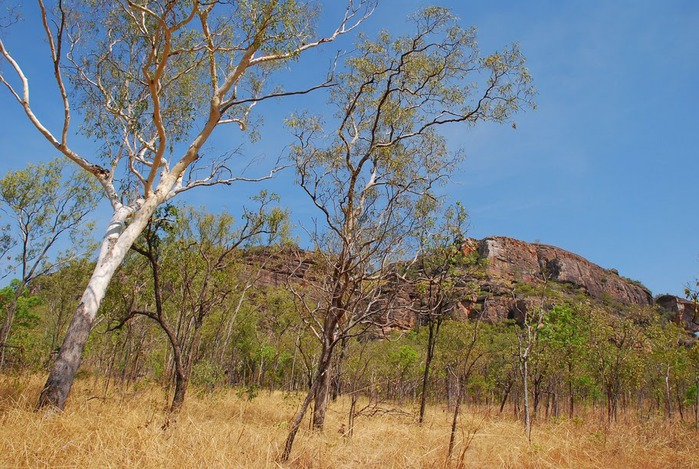 Национальный парк Какаду (Австралия) 10562