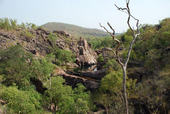 Национальный парк Какаду (Австралия) 98823