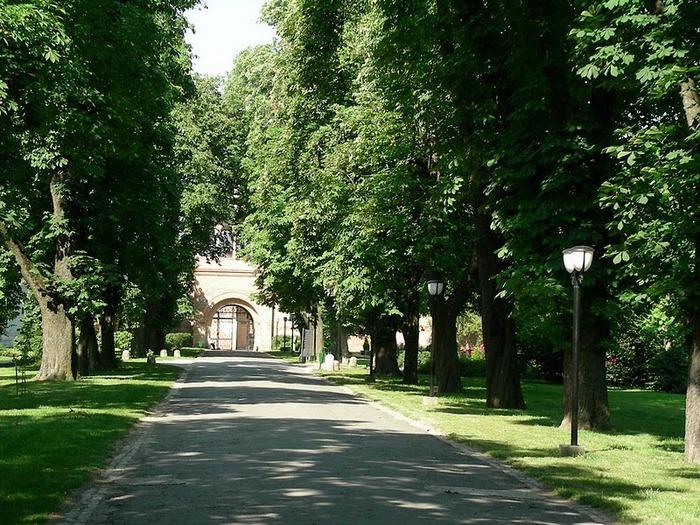 Дворец Могошоая - Palatul Mogosoaia 18113