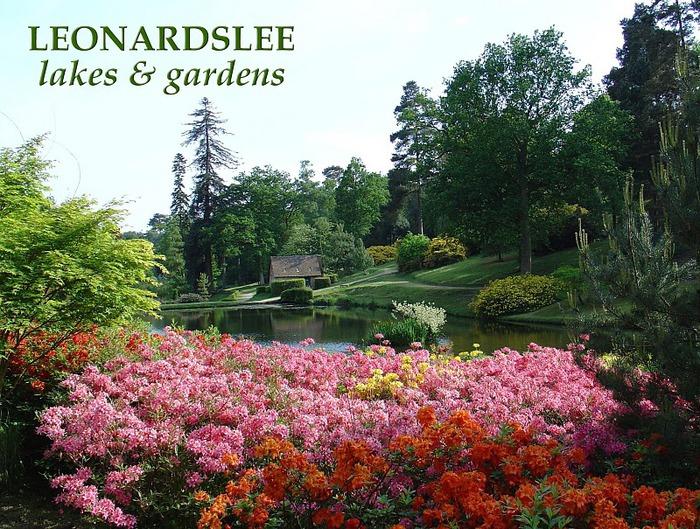Сад Леонардсли - Leonardslee gardens 13255