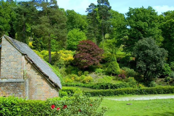 Сад Леонардсли - Leonardslee gardens 26889