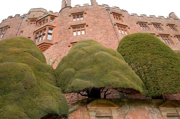 Замок Powis Castle, графство Поуис. 67304