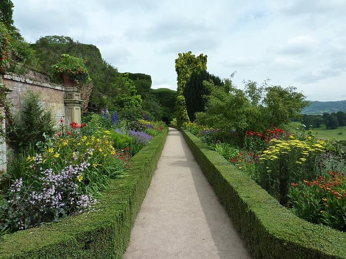Замок Powis Castle, графство Поуис. 83404