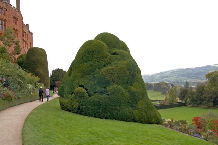 Замок Powis Castle, графство Поуис. 38341