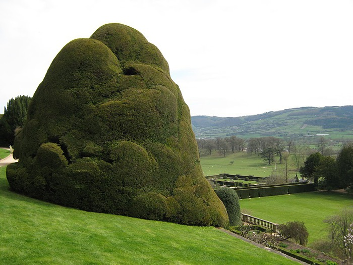 Замок Powis Castle, графство Поуис. 38356