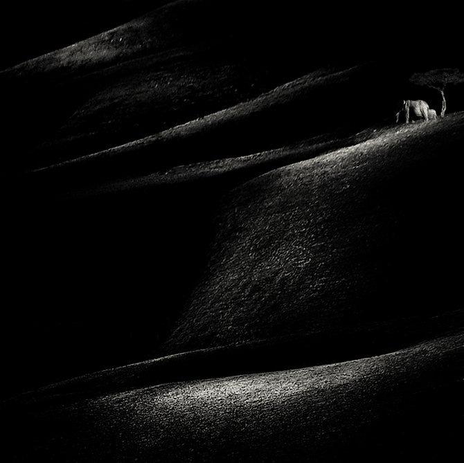 Фотограф Piet Flour 28