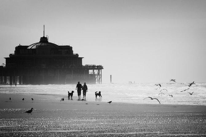 Фотограф Piet Flour 8