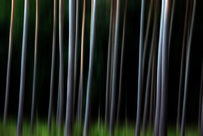 Фотограф Piet Flour 10