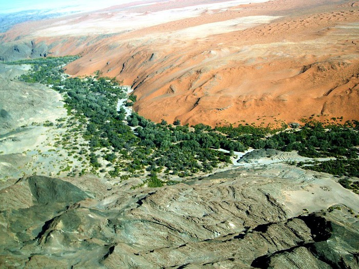 Намибия - страна двух пустынь 18157