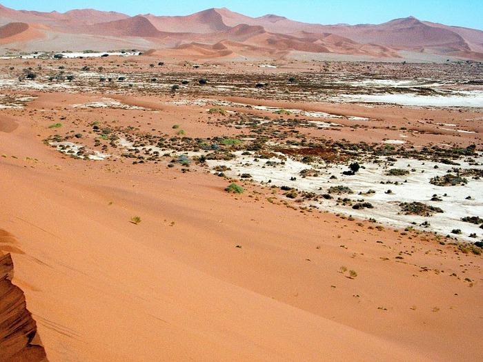 Намибия - страна двух пустынь 91467