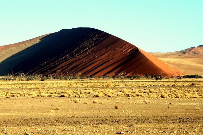 Намибия - страна двух пустынь 54685