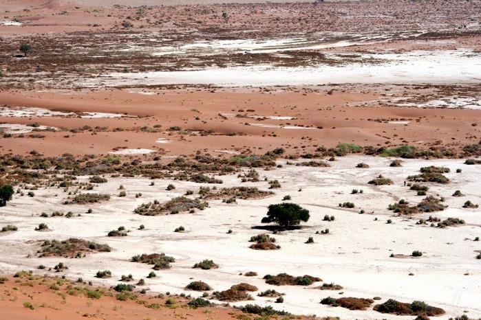 Намибия - страна двух пустынь 23788