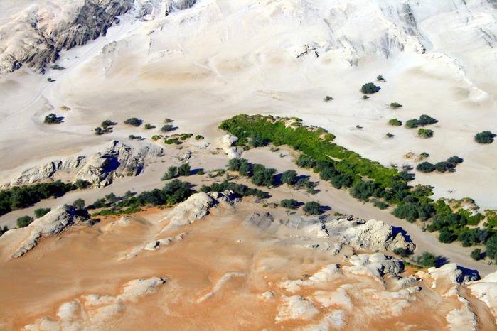 Намибия - страна двух пустынь 52708