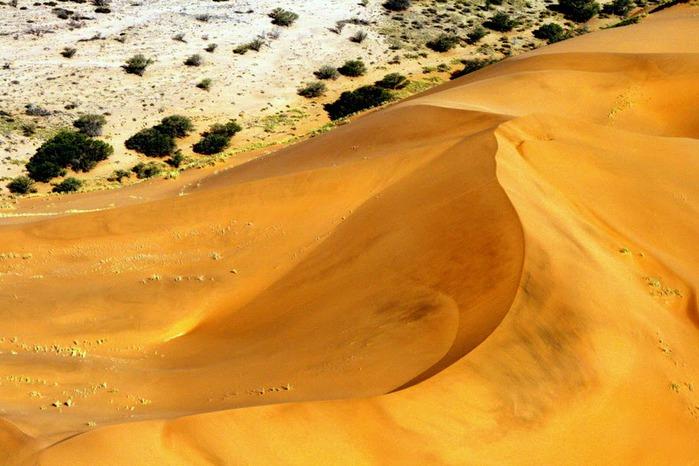 Намибия - страна двух пустынь 80239