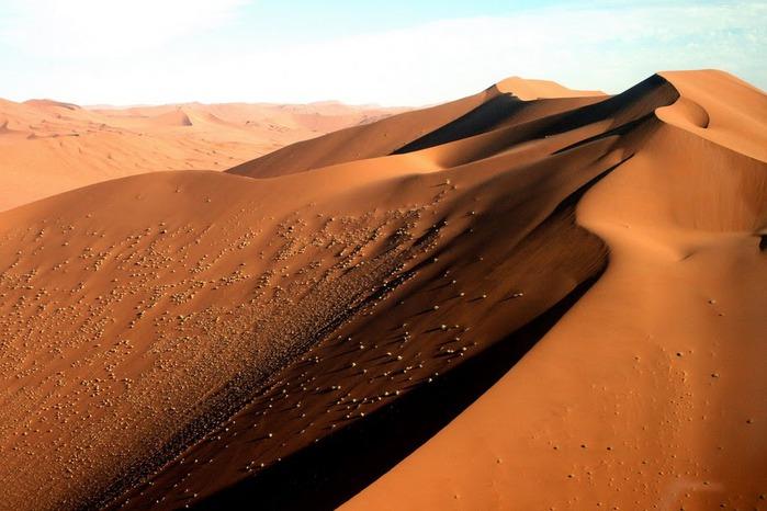 Намибия - страна двух пустынь 24068