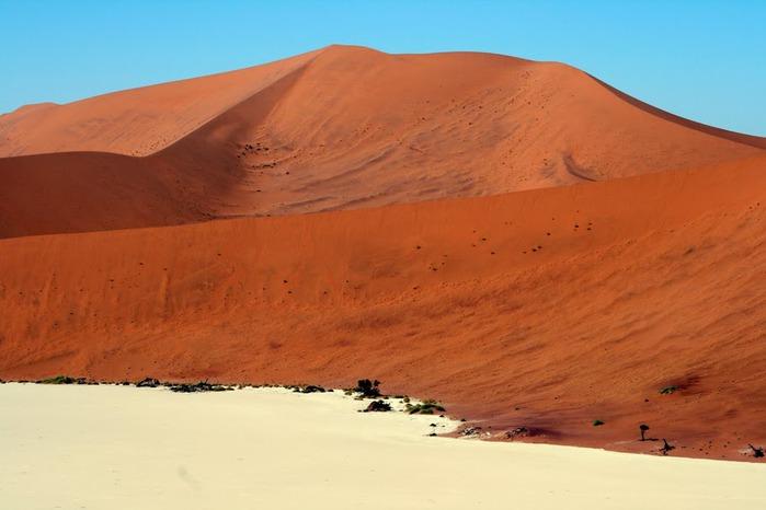 Намибия - страна двух пустынь 96843