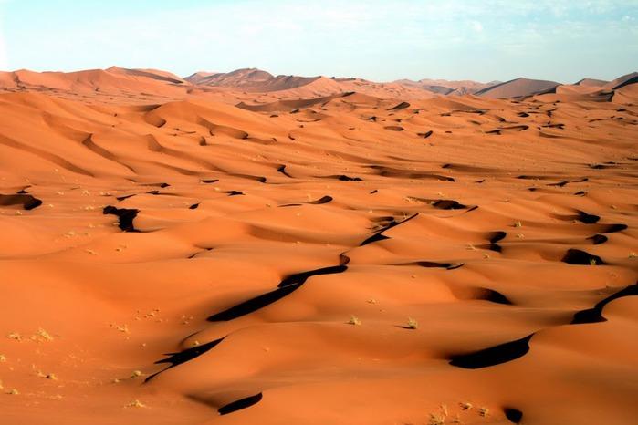 Намибия - страна двух пустынь 28360