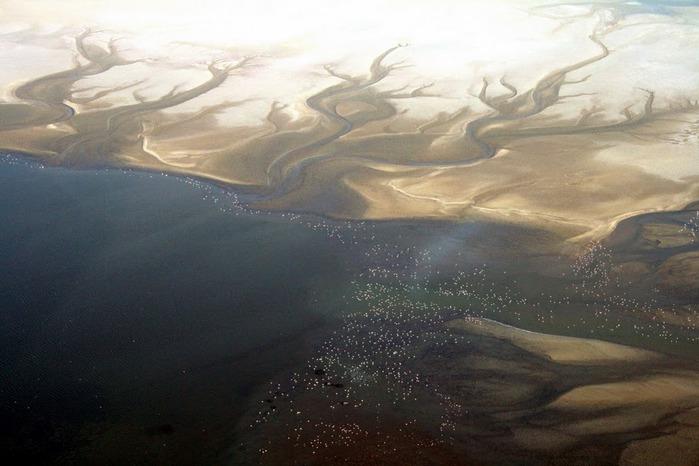 Намибия - страна двух пустынь 63757