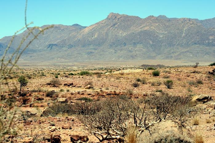 Намибия - страна двух пустынь 81591