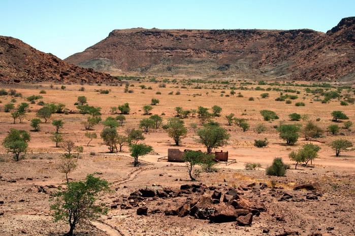 Намибия - страна двух пустынь 95183