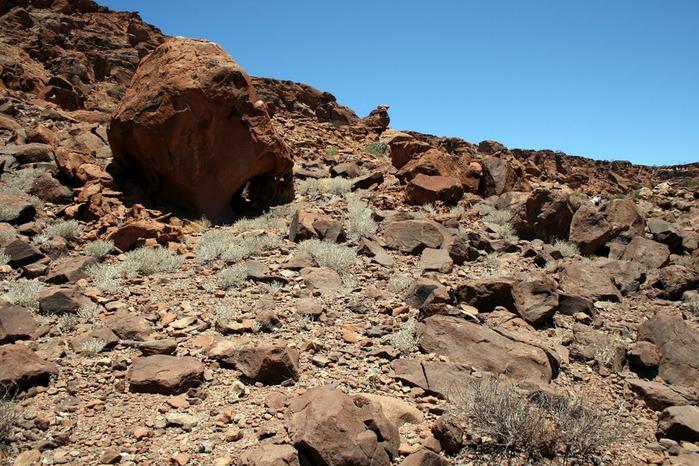 Намибия - страна двух пустынь 32626