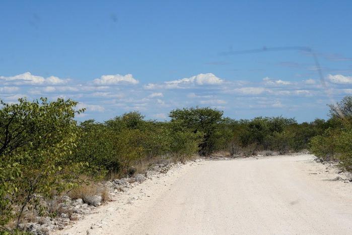 Намибия - страна двух пустынь 67825