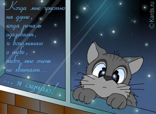 http://img1.liveinternet.ru/images/attach/c/1//63/811/63811418_skuchayu.jpg