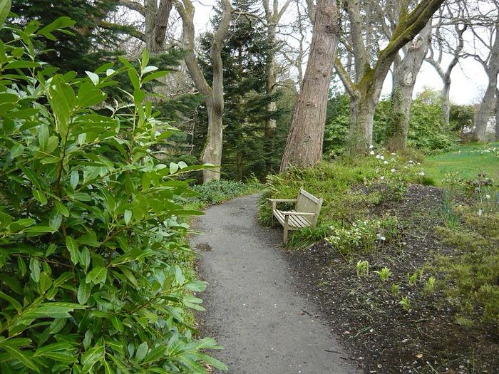 образцовый сад – волшебный Bodnant Garden 83284