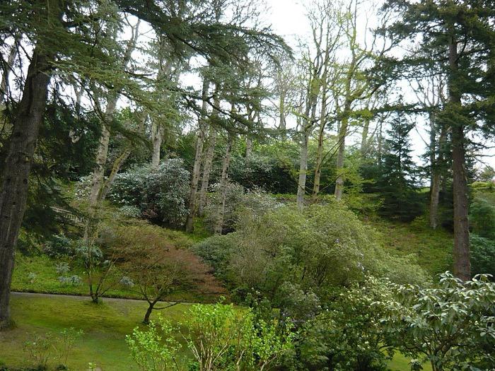 образцовый сад – волшебный Bodnant Garden 66553