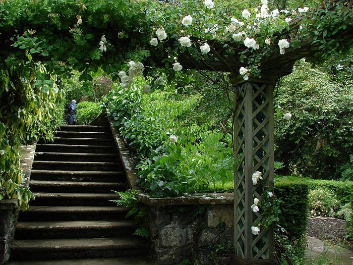 образцовый сад – волшебный Bodnant Garden 17761