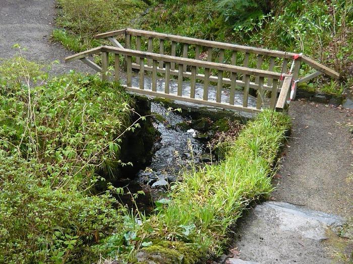 образцовый сад – волшебный Bodnant Garden 77945