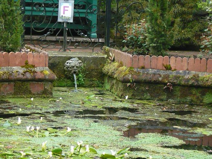 образцовый сад – волшебный Bodnant Garden 14241