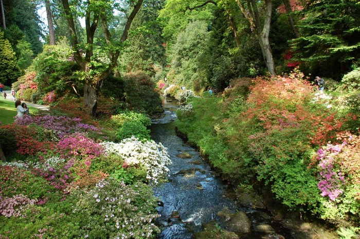образцовый сад – волшебный Bodnant Garden 73115