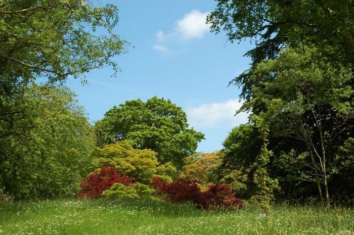 образцовый сад – волшебный Bodnant Garden 46000
