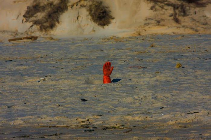 Зюльт: остров дюн и устриц 29122