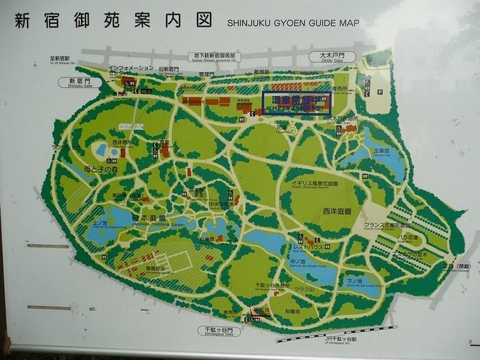 Парк Синдзюку - один из наиболее огромных парков Токио 13
