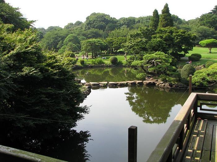 Shinjuku Gyoen - Парк Синдзюку 27917