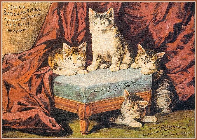Винтажные открытки с котами 10