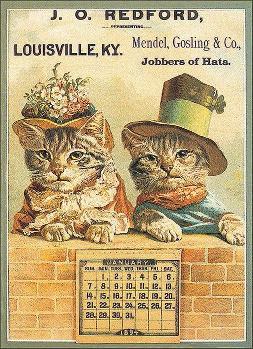 Винтажные открытки с котами 12