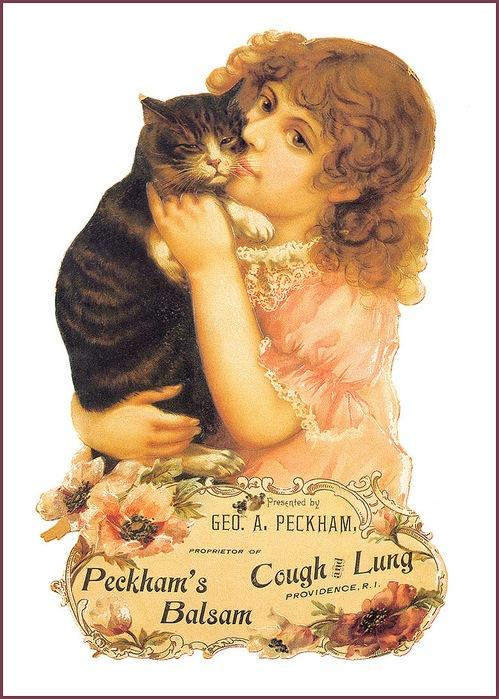 Винтажные открытки с котами 16