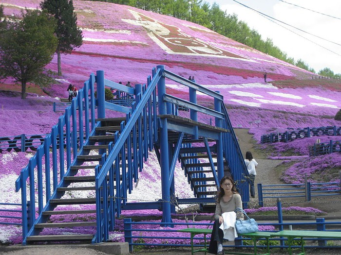 Higashi Mokoto Shibazakura Park 95455