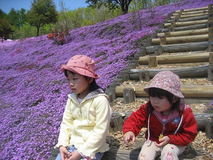 Higashi Mokoto Shibazakura Park 67205