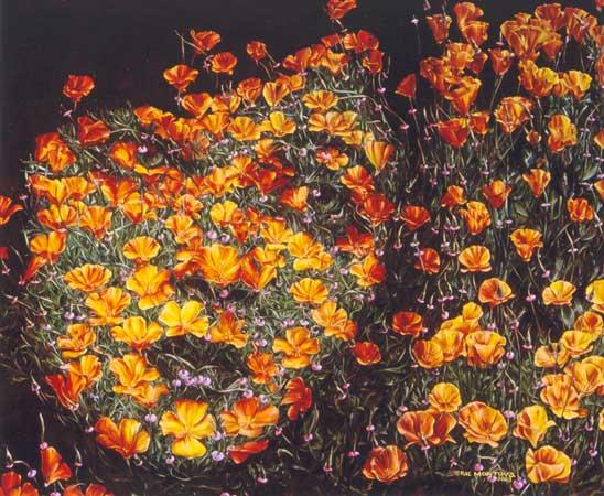 """Картинка  """"Лица из цветов """", картинки, прикольные картинки, фотоприколы, демотиваторы Joke4you.net - Развлекательный..."""