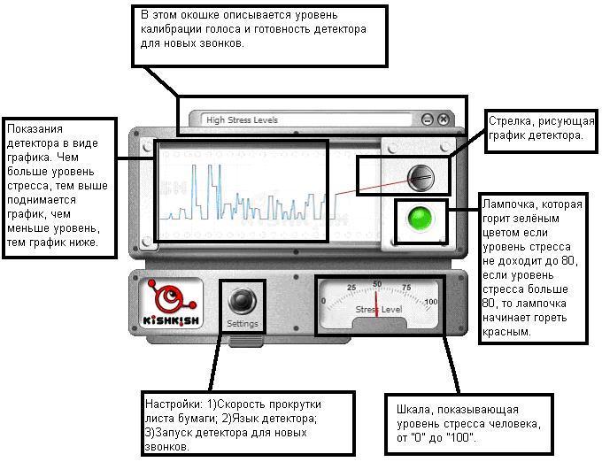 Как сделать домашний детектор лжи
