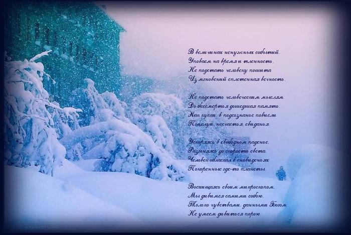 Заморозки в кубиках на зиму