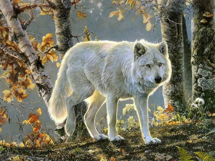 http://img1.liveinternet.ru/images/attach/c/1/54/847/54847450_0002.jpg