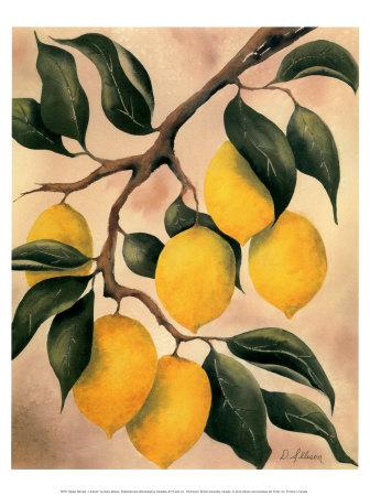 Как употреблять?  Соленые лимоны - изысканность вкуса и универсальность применения.  Это цитата сообщения.