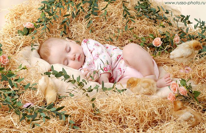 http://img1.liveinternet.ru/images/attach/c/1/55/840/55840858_son_03.jpg